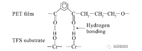 TFS與PET的結合模型-聯淨覆膜鐵