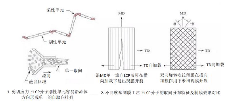LCP分子流动特性及排列方向对薄膜成型工艺影响示意图